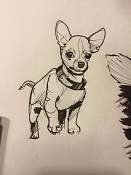 dogs sketches-dogs03.jpg