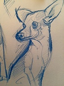 Dogs sketches-dogs08.jpg