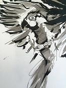 Birds sketches-bird02.jpg