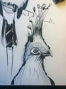 Birds sketches-bird03.jpg