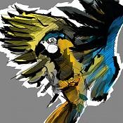 Birds sketches-03birds_color.jpg