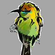 Birds sketches-bird02_color.jpg