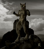 werewolf-lobo-fin-baja.jpg