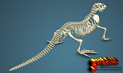 Komodo dragon skeleton by sergio mengual-komodo-finished7-logo.jpg