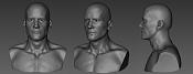 Male Head-malehead.jpg