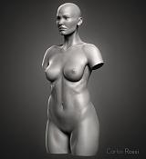 -front-torso.jpg