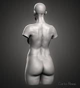 -back-torso.jpg