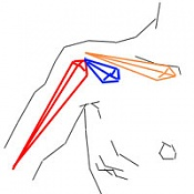 Rig de clavicula independiente y dependiente de brazo-sin-titulo-1.jpg