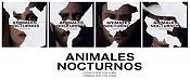 Animales nocturnos 2016-animales-nocturnos-pelicula-2016-thriller-criticsight.jpg