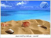 Conchas   pero de mar -see.jpg