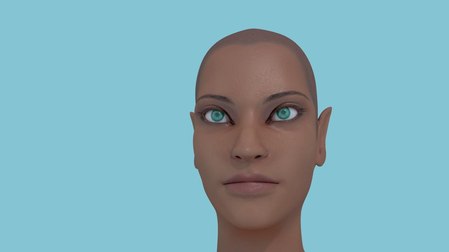 Rigs y modelos gratuitos para las actividades-elfa_3.jpg