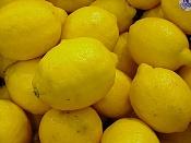 ZMarlon Brando-lemons.jpg