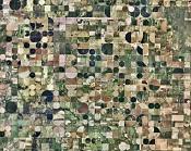 Google Earth - Vaya espectaculo  -cultivos.jpg