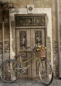 -bicicletaconflores.png