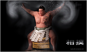 Sumo-frontal.png