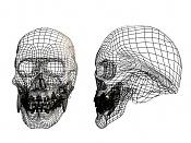 Calavera mutante-skull_mesh.jpg