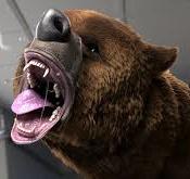 Mi nuevo colega el oso-mi-nuevo-colega-el-oso.jpg