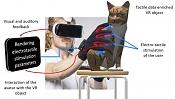 Coger los objetos virtuales que ves con tus gafas 3D-coger-objetos-virtuales-cn-guantes.jpg