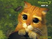 Cual es el la personaje mas tierno a      -shrek2cat_small.jpg
