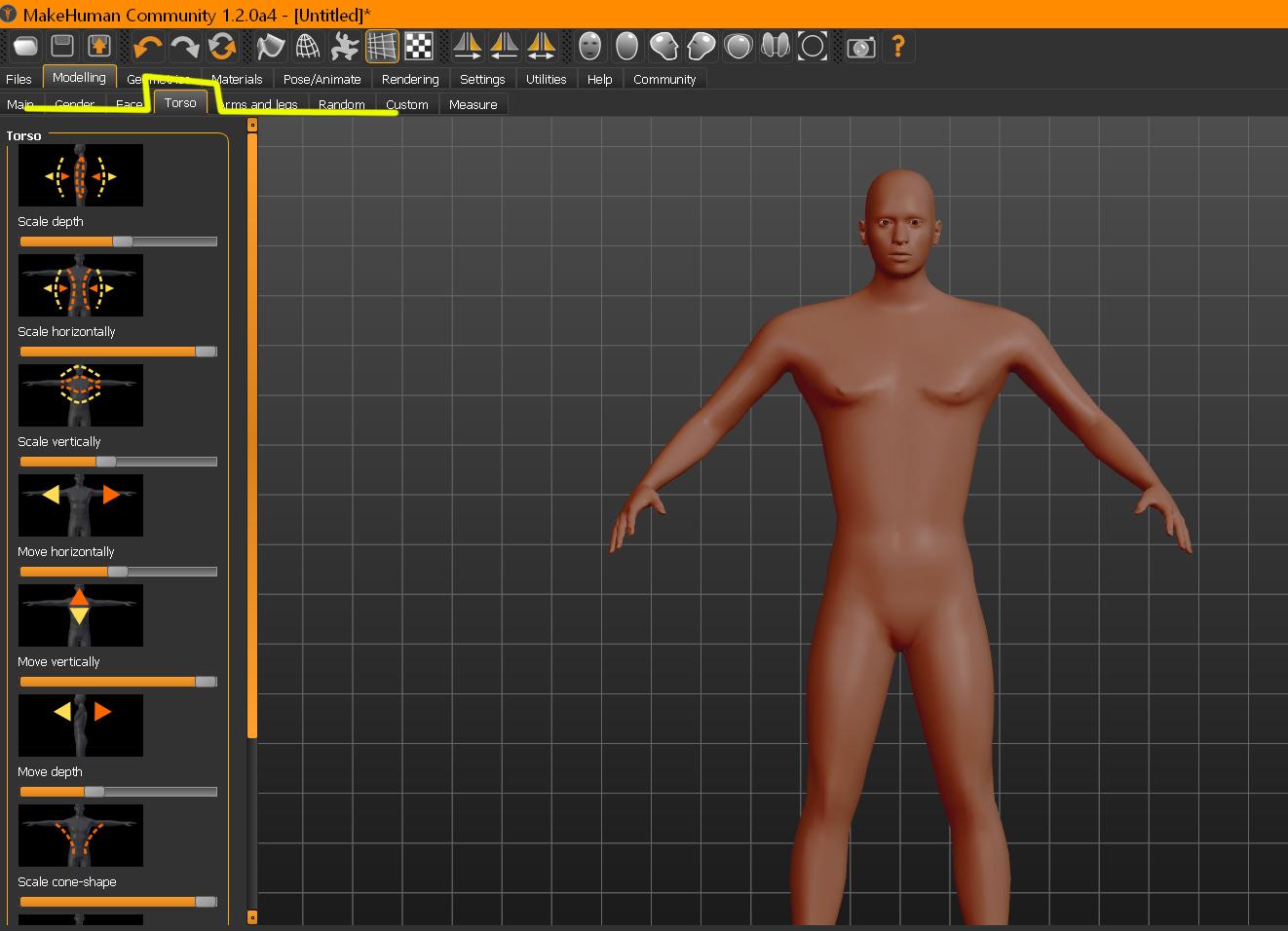 Pectorales en Makehuman-torso.jpg