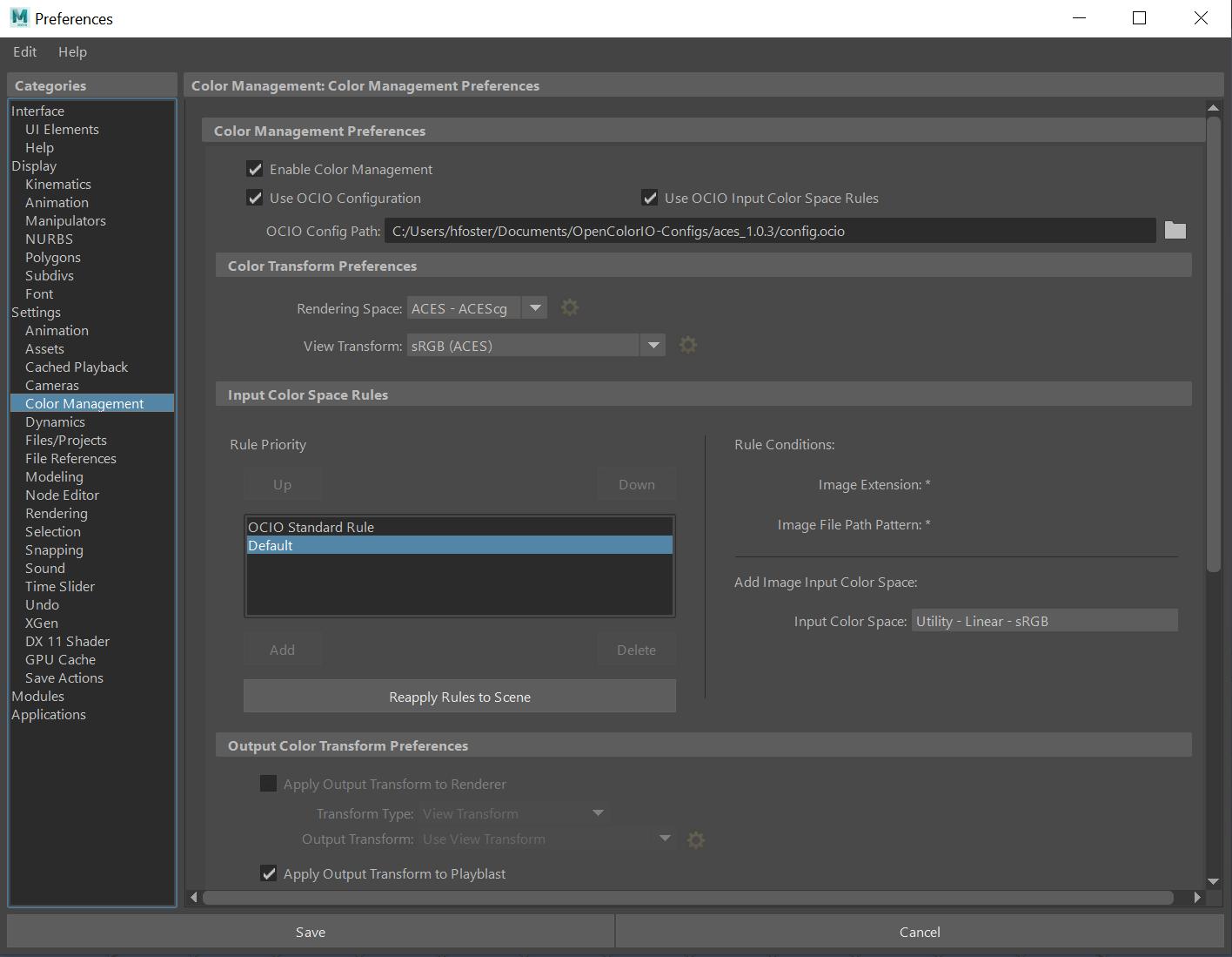 Gestionar colores con ACES-configurar-aces-en-autodesk-maya.png
