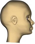 Mis primeros modelados y renders de cara humana-lateral.jpg