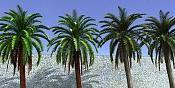 Cuestion acerca del Onyx Tree-palmeres.jpg