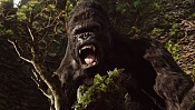 King Kong, trailers en HD-kiko9.jpg