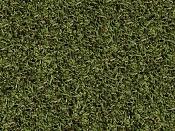 mapeado-hierba-grande.jpg