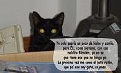 Mi gata es una boicoteadora  -gataforo_caronte.jpg