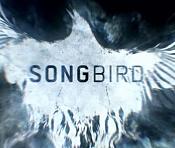 Songbird de Michael Bay desglose de efectos visuales-songbird-desglose-efectos-visuales.jpg