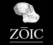 Zoic Studios trayectoria y trabajo