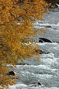 Fotos Naturaleza-img7354_p1.jpg