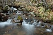 Fotos Naturaleza-img7495_p1.jpg
