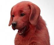 Clifford el gran perro rojo-clifford-perro-rojo.jpg