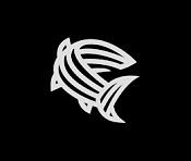 Trayectoria de Blackfish Studio