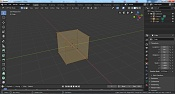 Contorno naranja alrededor del modelo-imagen-2.jpg