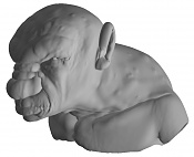 cabeza criatura-cri1.jpg