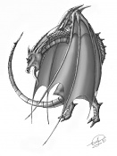 Dragonifero-dragon.jpg