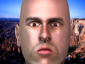 Una cabeza guapa-rfaceyelids.jpg