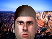 Una cabeza guapa-rfaceh.jpg