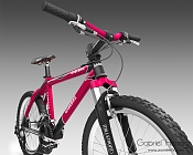 Bicicleta-bike2.jpg