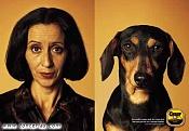 Quien Me Puede Mostrar Lo Que Hace Los Plugins-4131_parecidos_entre_perros_y_personas_2-2.jpg