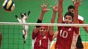 Fotos Graciosas divertidas con Humor-volley_ball_kitty.jpg