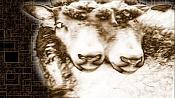 El Juego de los Fotogramas-url.jpg