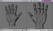 Estudio de manos-capmanoantes.jpg