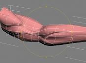 anatomia-4.jpg
