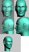 cabeza realista-cabeza21_03_2006.jpg