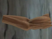 anatomia-10a.jpg