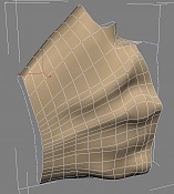 anatomia-posterior.jpg